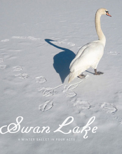 Poster with a picture of a swan with the text, Swan Lake: A winter ballet in four acts.